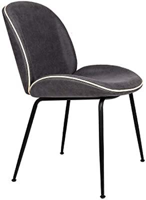 LRZS-Furniture Nordic Wrought Iron Beetle Dining Chair Modern Minimalist Chair Hotel Cafe Chair Conference
