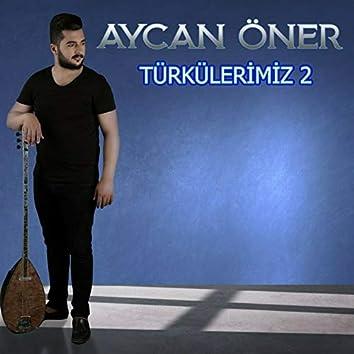 Türkülerimiz, Vol. 2