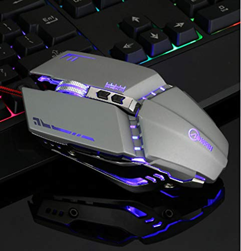 WERNG bekabelde optische muis voor computer, met LED-lampen, DPI instelbaar, stil en lopend, geschikt voor computer, laptop