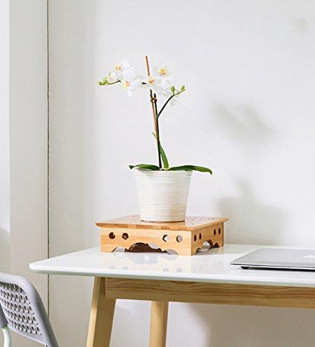 RSWLY Soporte de Flores de Escritorio Creativo, Estante de Madera del Estante de pote Tallado Flor, 25 x 6.5cm