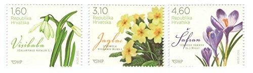 Drei verschiedene Stempel von Flowers / Flora - 3er-Set offizielle Briefmarken 2012 - Scott # 827-829 / Kroatien / MNH