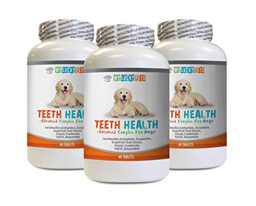 MY LUCKY PETS LLC Teeth Health for Dogs - Advanced Teeth Health for Dogs - Fights Bad Breath - Best Looking Gums and Teeth - Cranberry Pills for Dogs - 180 Tablets (3 Bottles)