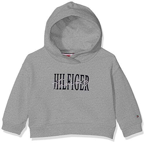 Tommy Hilfiger Essential Graphic Logo Hoodie Capucha, Gris (Grey Heather 004), 86 para Bebés