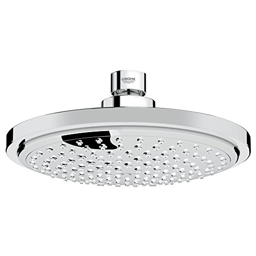 Euphoria Cosmopolitan 180 1-Spray Fixed Showerhead