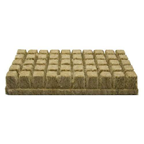fervory 50 Stücke Steinwolle Stecklingsblöcke Steinwolle Anzuchtmatte Für Kräftiges Pflanzenwachstum 25 25 40 MM