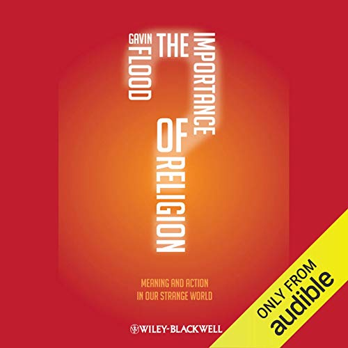 The Importance of Religion audiobook cover art