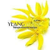 Musique relaxante du jinghu