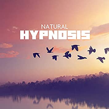 Natural Hypnosis - Birds Singing & Instrumental Melodies for Better Day and Rest