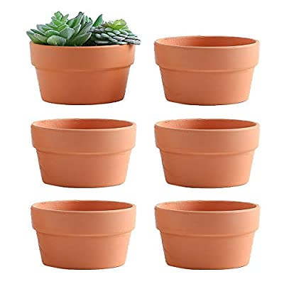 Yishang 6 Inch Terracotta Shallow Planters,Ceramic Flower Clay Plant Pots with Drainage Hole,Unglazed Cactus/succlent Plant Containers Indoor Garden Bonsai Pots