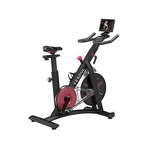 Bicicleta Estática , Indoor, fitness, Yesoul, Smart con Pantalla, S3 Pro