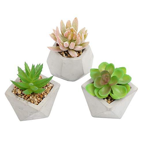YZCX 3 Pezzi Mini Piante Succulente Artificiali Piante Finte in Vaso Decorazioni per Soggiorno, Ufficio, Ristorante, Caffetteria, Negozio (Stile 2)
