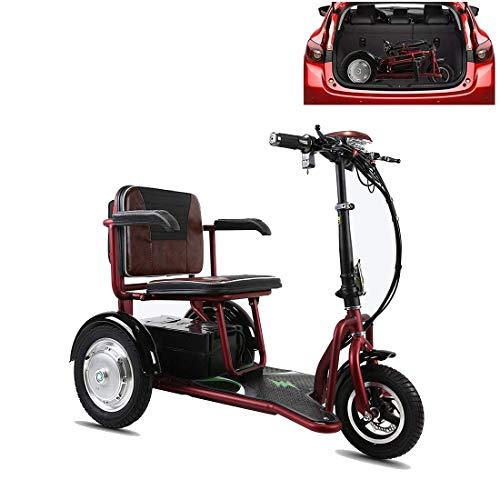 XCBY E-Trike Dreirad - 350W Elektroroller - 55km Reichweite - herausnehmbarer Lithium Akku - LED Licht - Seniorenmobil mit Straßenzulassung 55KM