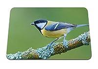 26cmx21cm マウスパッド (座っている鳥の枝の色) パターンカスタムの マウスパッド