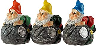 BWG Small Solar Light Gnomes
