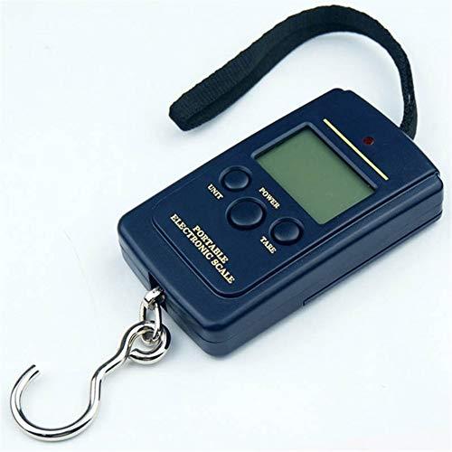 Diätwaage Tragbare Mini-Hand digitale Hängewaage for Koffer Reisetasche Elektronischer Gewichtung Gepäck-Skala Fisch Haken Gleichgewicht edelstahl (Color : A01)