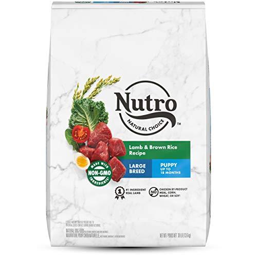 NUTRO NATURAL CHOICE Large Breed Puppy Dry Dog Food, Lamb & Brown Rice Recipe Dog Kibble, 30 lb. Bag