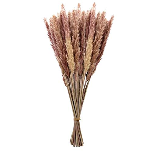 30Pcs Dried Flowers Reed Bouquet Pampas Grass,Natural Dried Flower Bunch Wheat Setaria Boho Branches Bouquet for Home Vases Garden Wedding DIY Party Decor
