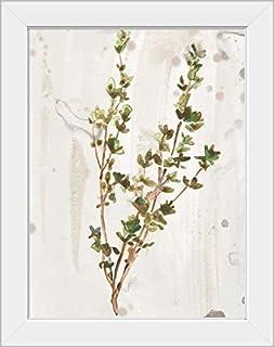 CANVAS ON DEMAND Antique Earthtone Herbs II White Framed Art Print, 15