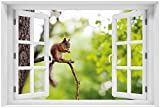 Wallario Poster mit Fenster-Illusion: Eichhörnchen auf