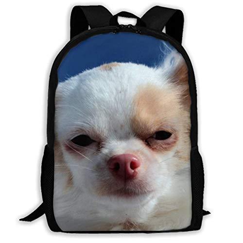 Kinderrugzakken, hond Chihuahua reistas, comfortabele reistas voor volwassenen Outdoor Gym, 43x28x16cm
