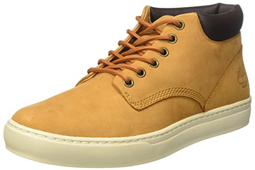 Chaussure Timberland Homme