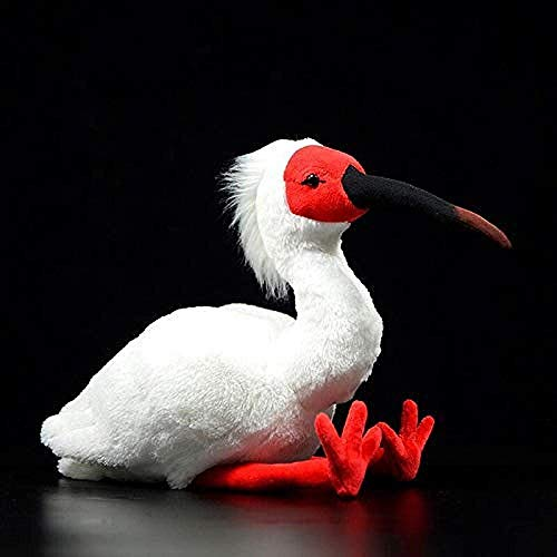 DINGX 25 cm de Alta Vida útil Vida Real Vida asiática crestada Ibis pájaro Peluche Juguete Regalos para niños chuanze