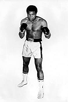 A Muhammad Ali wearing boxing gloves Photo Print  8 x 10