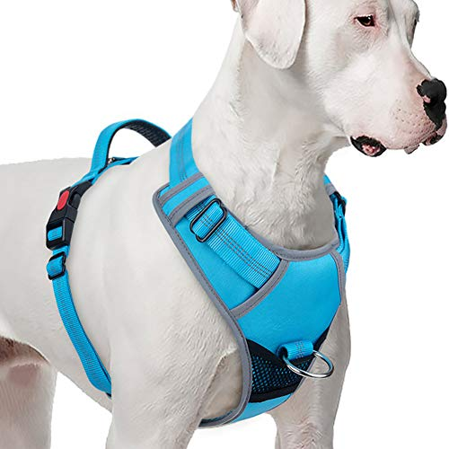 ThinkPet No Pull Harness Breathable Sport Harness - Reflective Padded Dog Safety Vest with Top Handle, Back/Front Clip for Easy Control M Light Blue