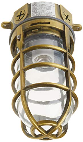 Woods L1706AB Vandal Resistant 150W Incandescent Security Light, Ceiling Mount, Antique Brass