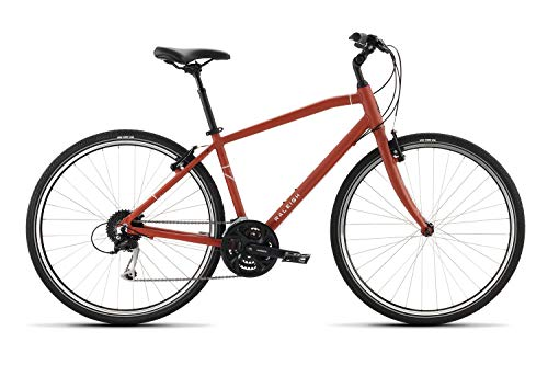 Raleigh Bikes Detour 3 LG/19