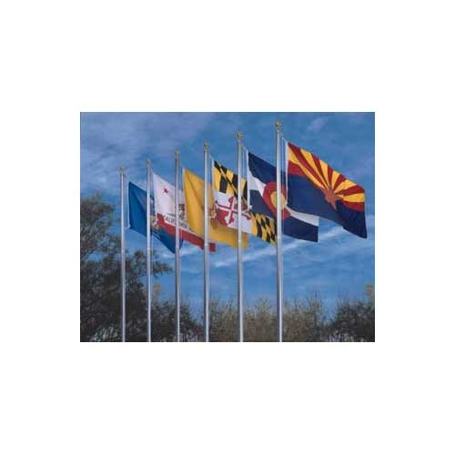 Online Stores 50 State Polyester Flag Set