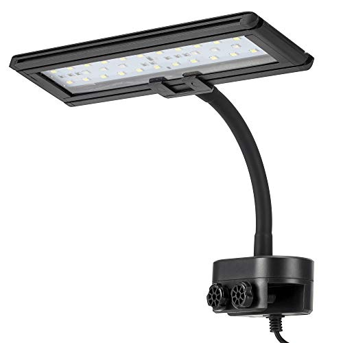hygger 9.7 Inches Blue White LED Aquarium Light Clip on Small Led Light for Planted Saltwater Freshwater Fish Tank with Gooseneck Clamp