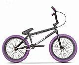 LFSTY Bicicleta BMX, Ruedas de 20 Pulgadas, Principiantes a Corredores intermedios, Cuadro de Cromo molibdeno de Alta Resistencia, Freno Trasero en Forma de U