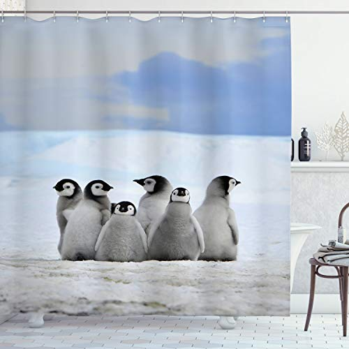 Ambesonne Underwater Shower Curtain, Young Penguins Arctic Animals Picture Background with Snow Pile and Winter Sky, Cloth Fabric Bathroom Decor Set with Hooks, 75