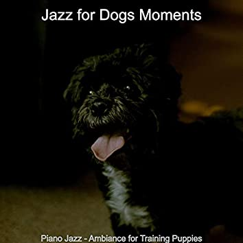 Piano Jazz - Ambiance for Training Puppies