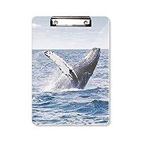 海座頭魚の科学は自然の写真 フラットヘッドフォルダーライティングパッドテストA4