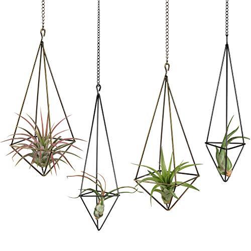 Dahey Hänge-Pflanzenhalter aus Metall, 4 Stück, 2 Größen, Tillandsien-Aufhänger, Himmeli-Gemometrisches Pflanzgefäß mit Ketten, rustikale Heimdekoration, bronzefarben