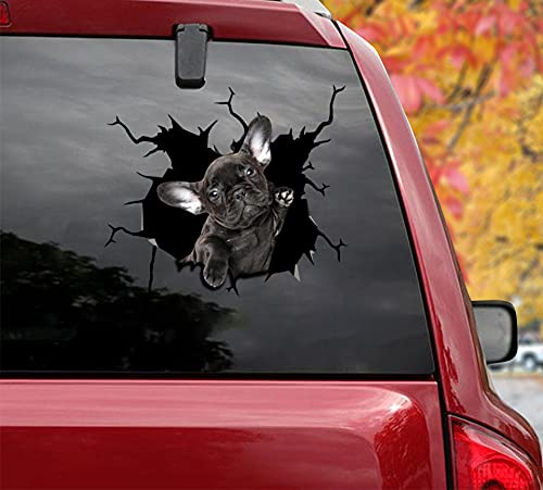 3 Pcs Combo Black Frenchie Car Stickers and Decals Size 8' x 8' - Vinyl Broken Glass Dog Bumper Stickers for Car Decorations, Laptop Stickers Collection 23