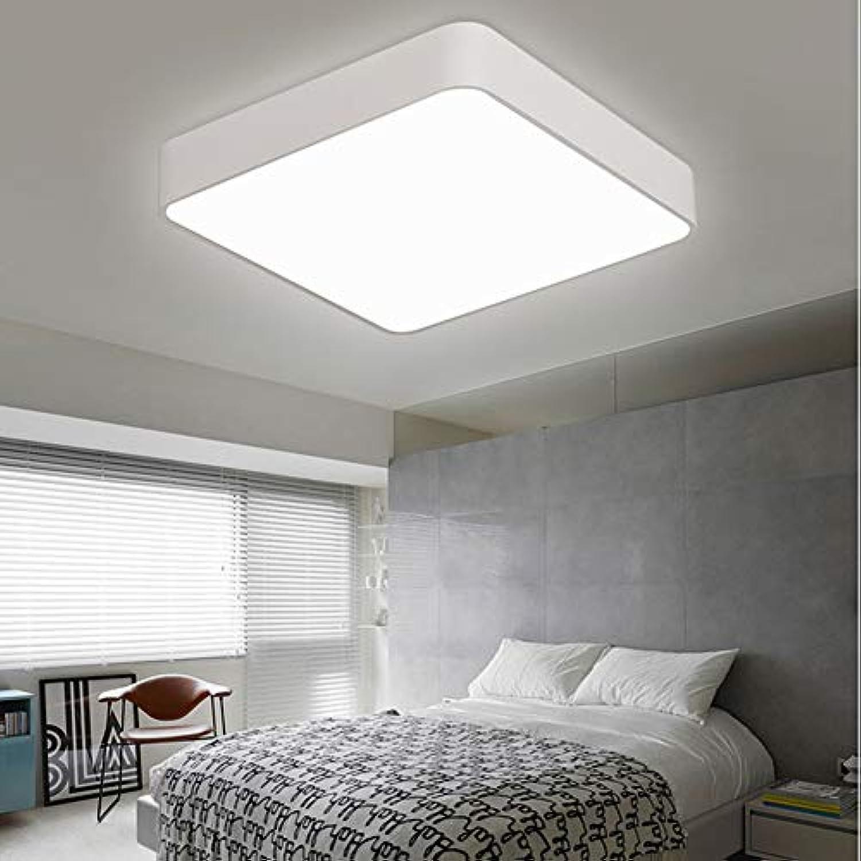 Deckel Lampe Moderne minimalistische LED Acryl Kronleuchter für Schlafzimmer Wohnzimmer Aisle Küche Badezimmer,Weißdimming,300x300mm