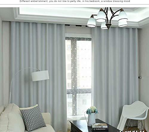 BAIF Aislamiento térmico del Hotel. Protector Solar Cortinas de Gama Alta Sala de Estar, Doble Cara, Cortina Opaca de Alta precisión, 140 cm x 245 cm (Ancho x Alto) 2 Paneles, Gris