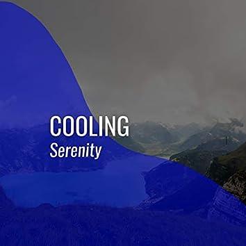 # 1 Album: Cooling Serenity
