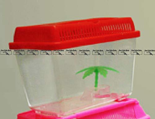 New Little Birds Acquario Acquarietto Contenitore Rettangolare in plastica Vari Colori (cod.AE160 - Dimensioni 14 x 8 x 11 cm)