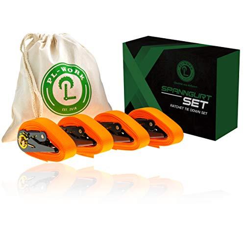 PL-Work | Hochwertiges Spanngurt Set | TÜV/GS | 800 KG | 4 m x 25 mm | Transportbeutel | Zurrgurte mit Ratsche