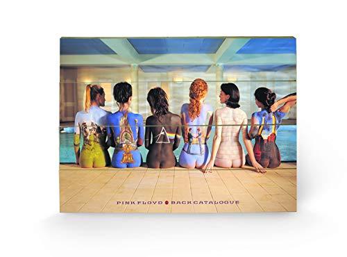Pink Floyd Pyramid International - Pieza Mural (Madera, tamaño pequeño), diseño Back Catalogue con Portadas pintadas en Espaldas de Mujeres