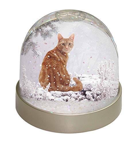 Advanta giftnger Winter Schneekugel Cat Snow Dome Geschenk, Mehrfarbig, 9,2x 9,2x 8cm