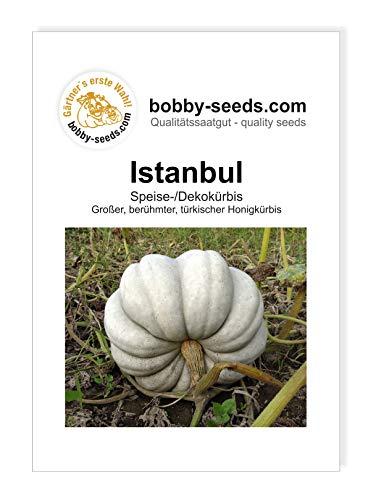 Istanbul Türk Honigkürbis von Bobby-Seeds, Portion