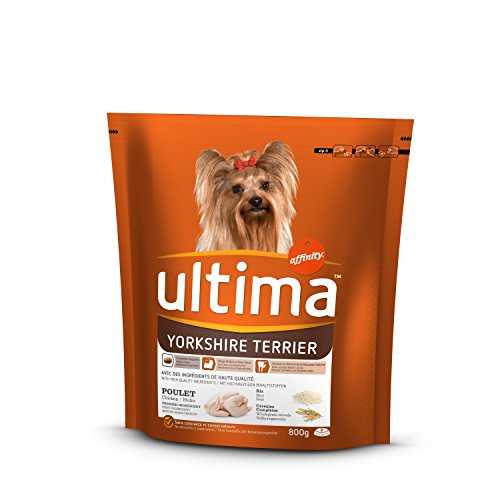 Ultima Yorkshire Terrier, 1er Pack (1 x 800 g)