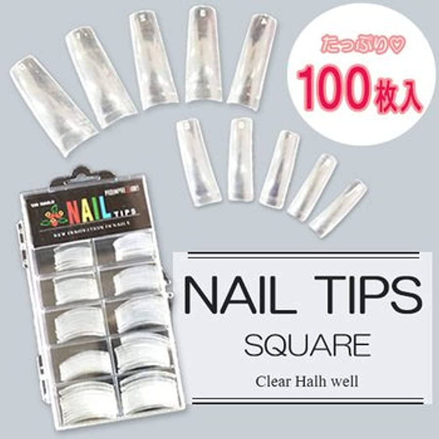 マーベル対応姪ネイルチップ(クリア) 100枚入 #0~9サイズ つけ爪 ハーフチップ ネイルアート