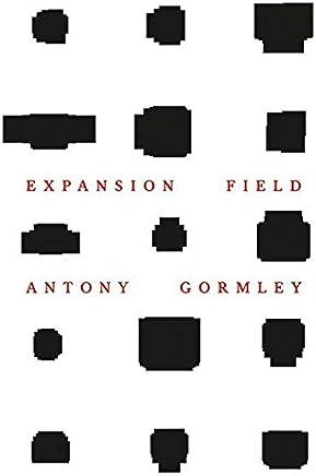 Antony Gormley: Expansion Field