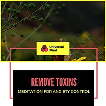 Remove Toxins - Meditation For Anxiety Control